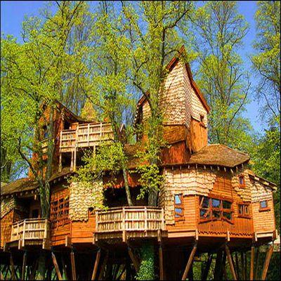 Tree Houses | Caelum Et Terra