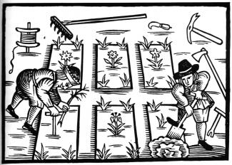 woodcut_gardenerslabyrinth-325x232