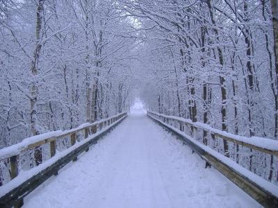 Winter-Wallpaper-Backgrounds